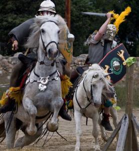 tarracoviva-cavall
